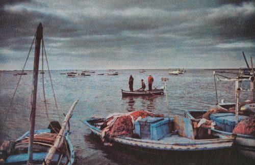 Photographie extraite du livre l'Écume des amnésies, de Shiraz Bazin-Moussi