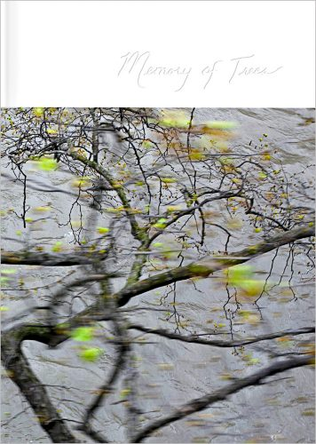Couverture du livre Memory of trees, de Kathryn Cook